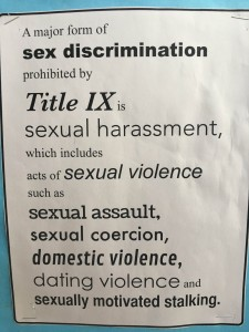 Title IX makes it so any form of sex discrimination is prohibited.