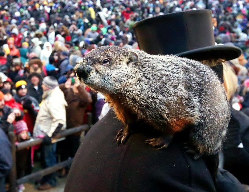 Groundhog's Day is seriously underrated - The Collegiate Live